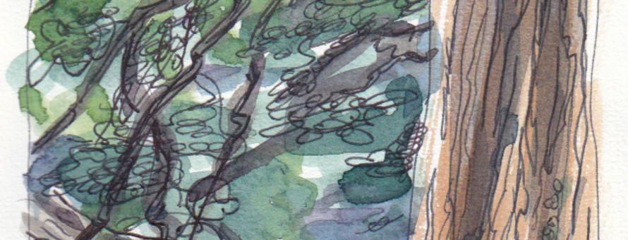 Image à la une - Parc de la Tête d'Or